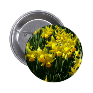 Yellow Daffodils I Cheery Spring Flowers 2 Inch Round Button