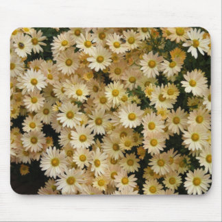 Yellow Daisies Mouse Pad