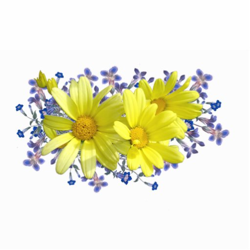 Yellow Daisy Bouquet Pin Photo Sculpture