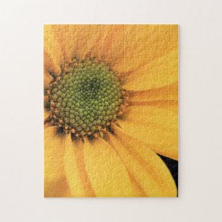 Yellow Daisy Close Up Jigsaw Puzzle