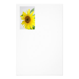 Yellow Daisy Flower Stationery Paper