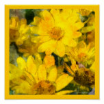 Yellow Daisy Flowers Watercolor Look Poster