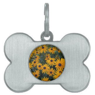 Yellow daisy garden flowers. pet tag