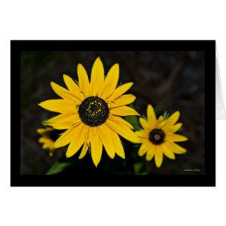 Yellow Daisy Pop Card