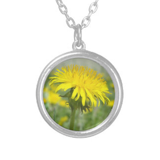 Yellow Dandelion Silver Plated Necklace