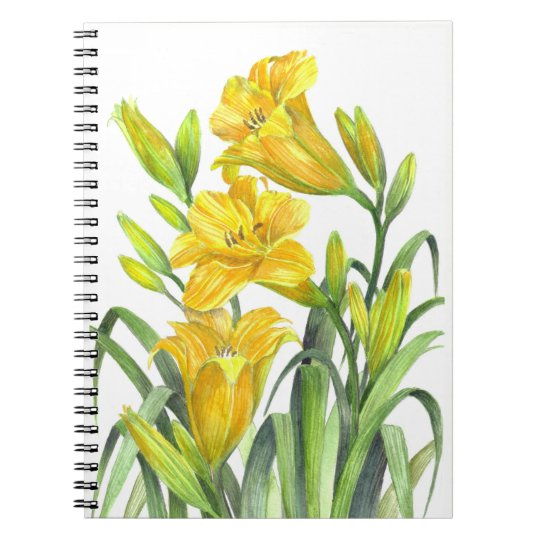 Yellow Day Lillies Notebook