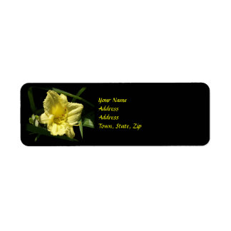 Yellow Daylily Flower Return Address Label