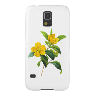 Yellow DiIlinea Scandens by Pierre Joseph Redoute Galaxy S5 Cases