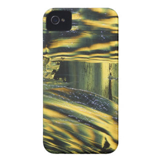 Yellow Dog iPhone 4 Case-Mate Cases