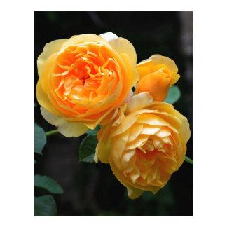 Yellow English Roses Letterhead Design