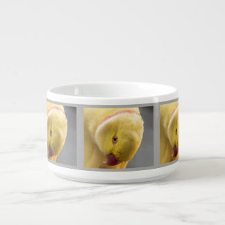 Yellow Fellow Bowl