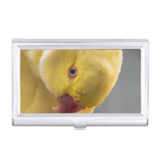 Yellow Fellow Business Card Holder