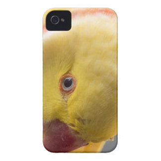 Yellow Fellow iPhone 4 Cover