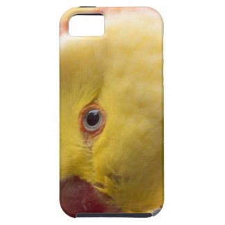 Yellow Fellow iPhone 5 Cover