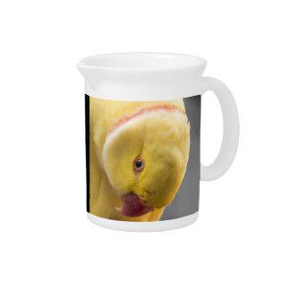 Yellow Fellow Pitcher