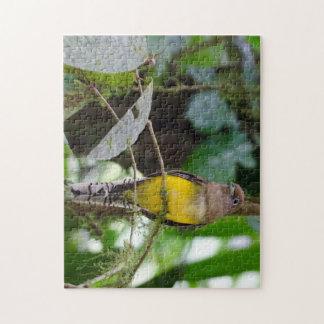 Yellow Female Taragon Puzzle
