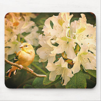 Yellow Finch with Flowers - Mouse Pad