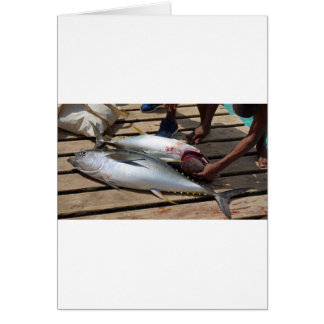 yellow fins tuna card
