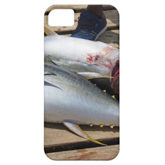 yellow fins tuna iPhone 5 cases