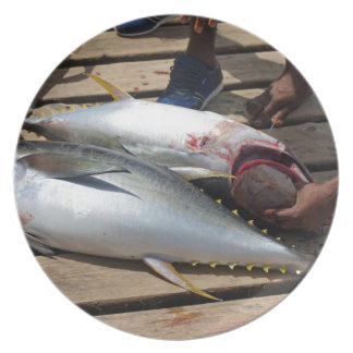 yellow fins tuna plate