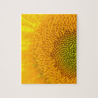 Yellow Floral Sunflowers Puzzles