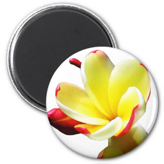 Yellow Flower 2 Magnet