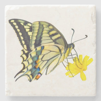 Yellow Flower and Beautiful Butterfly Stone Beverage Coaster