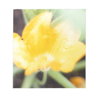 Yellow Flower Bloom Notepad