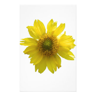 Yellow Flower Customized Stationery