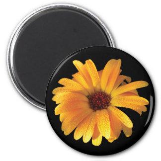 Yellow Flower & Dew Magnet