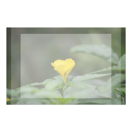 yellow flower face up green leaves stationery paper