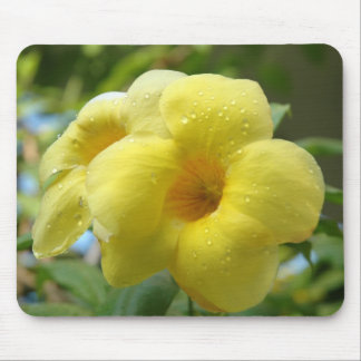 Yellow Flower ~ Mousepad