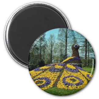 yellow Flower peacock, Mainau flowers Magnet