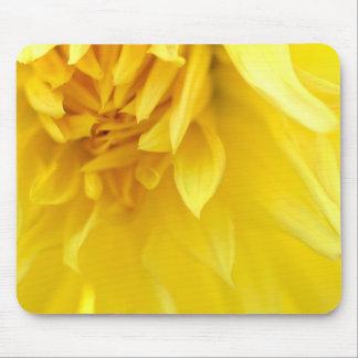 Yellow Flower Petals Mousepad