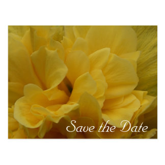 Yellow Flower Petals Save the Date Postcard