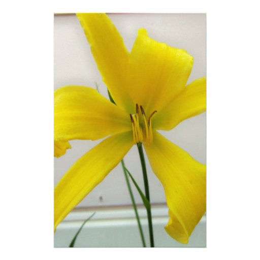 yellow flower personalized stationery