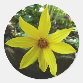 yellow flower round stickers