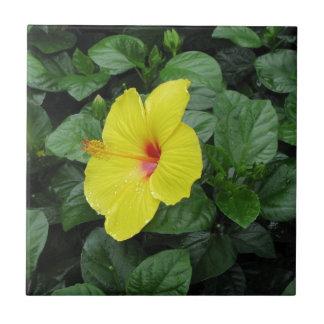 Yellow Flower Tile