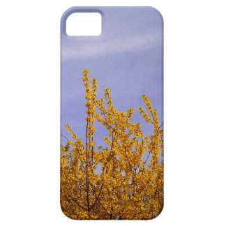 Yellow Flowers Against A Blue Sky iPhone 5 Cases