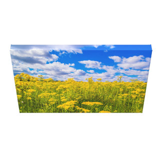 Yellow Flowers and Blue Skies Wrapped Canvas
