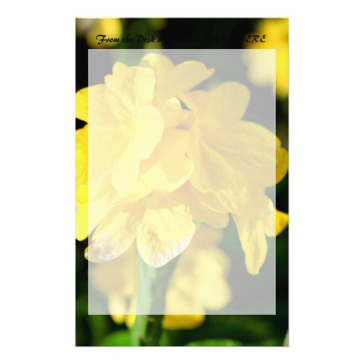 yellow flowers close up floral nature picture customized stationery