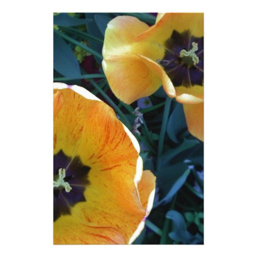 Yellow Flowers in Bloom - Little Venice, England Stationery