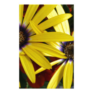 Yellow Flowers Personalized Stationery