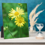 Yellow Flowers  Plaques