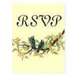Yellow Flowers Teal Vintage Birds Response Card Postcard