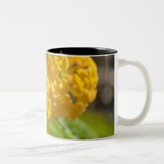 Yellow Flowers Two-Tone Coffee Mug