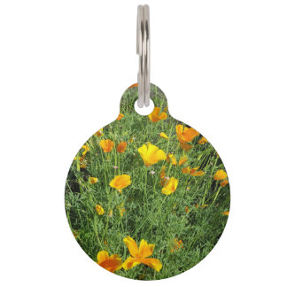 Yellow garden flowers pet name tag