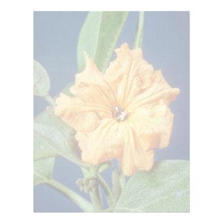 yellow Geiger tree (Cordia sebestena) flowers Personalized Letterhead