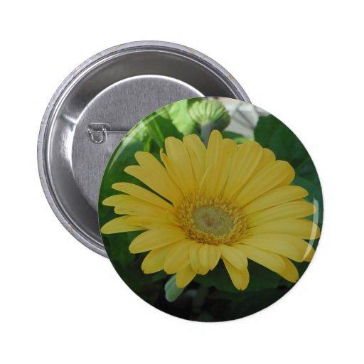 Yellow Gerber /  Gerbera Disiy Pins