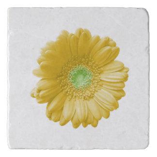 Yellow gerbera daisy trivet
